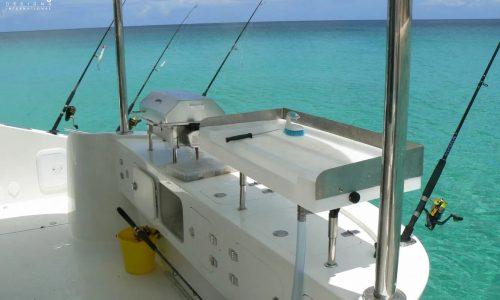 NicksH Growler 950 VT Power Catamaran - SDI - Schionning Designs International