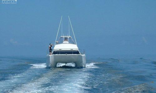 Growler 950 VT Power Catamaran - SDI - Schionning Designs International